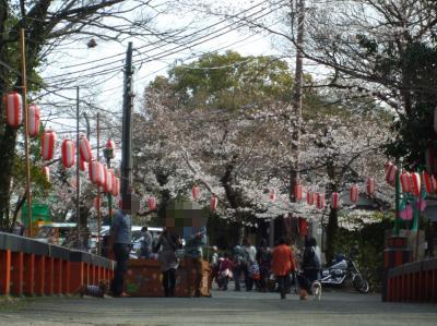 satukiyama01