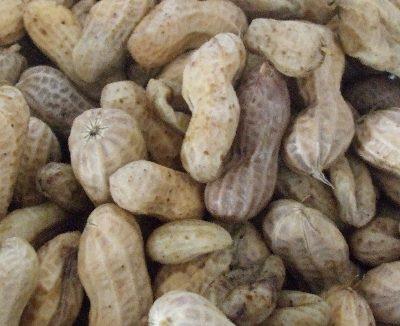 pi-nuts